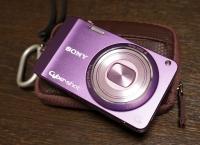 DSC-WX10