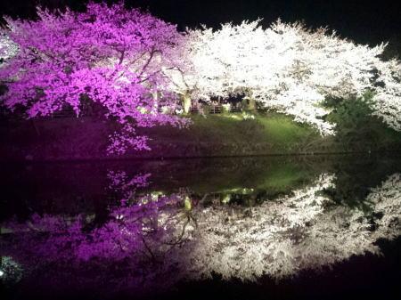 舞鶴公園5