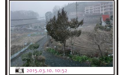 3月の雪 10日 10:52