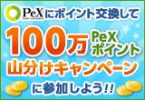 pex_160_110.jpg