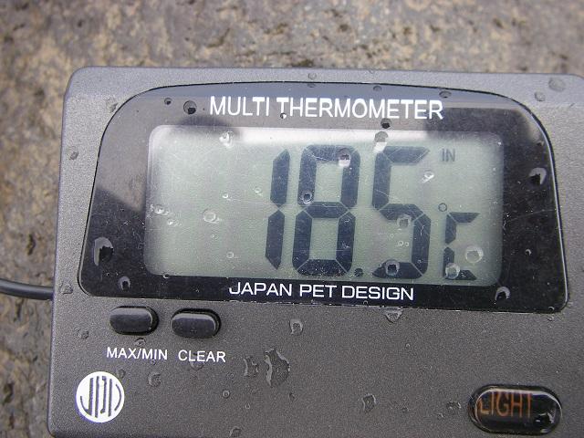 P6230228 大渡橋-1.jpg