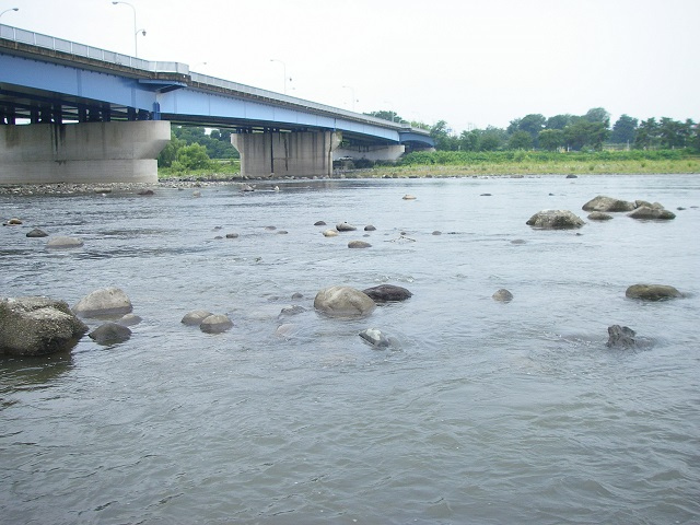 P7280306 大渡橋 -1.jpg