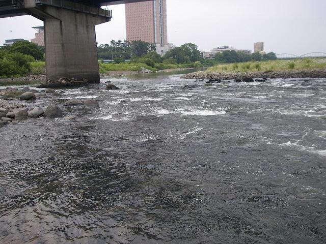 P7290308 中央大橋左岸.jpg
