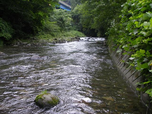 P7300892 小黒 鉄橋上流.jpg