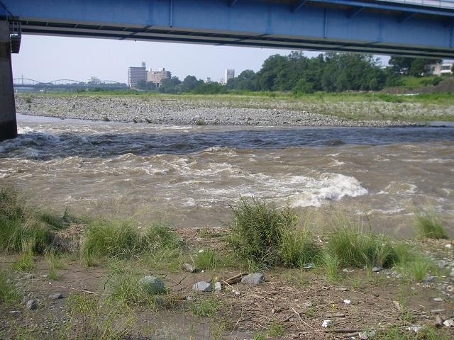 P7310898 中央大橋左岸.jpg