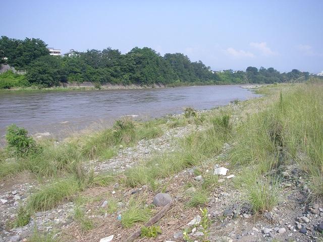 P7310899 中央大橋左岸上流.jpg