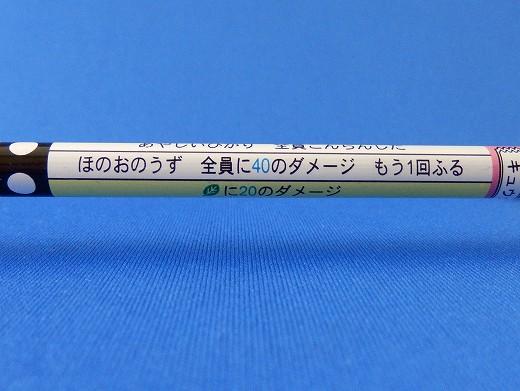 バトえん20150112P1120005