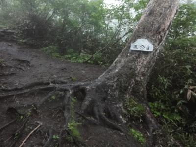 羊蹄山・駒ヶ岳 058