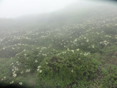 羊蹄山・駒ヶ岳 097