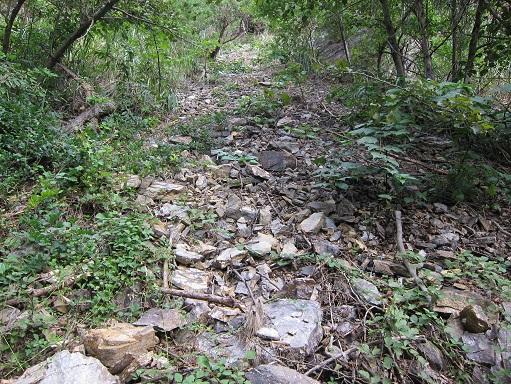 大野鉱山への道