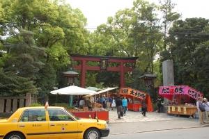2015根津神社 (10)