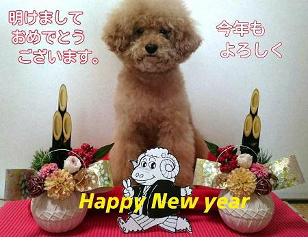 2014-12-31-21-39-15_deco.jpg