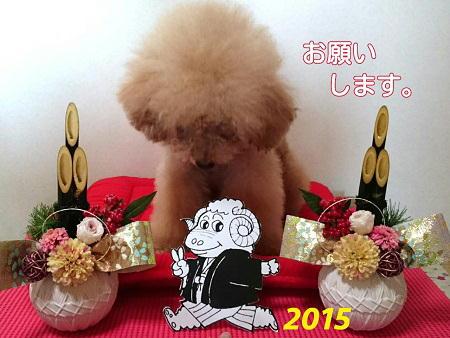 2014-12-31-21-41-16_deco.jpg