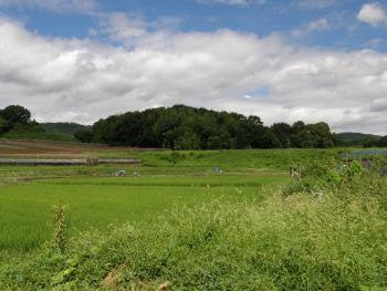 150307_01田園風景
