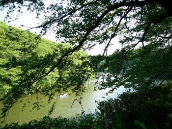 150620_01池のある風景