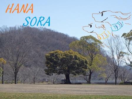 11MAR15 WAKAMIYA 019p - コピー