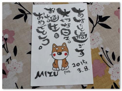 2015MIZU5sai5_convert_20150307215553.jpg