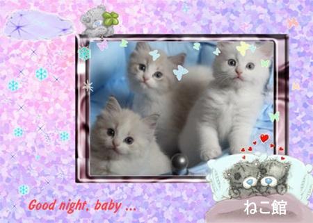 blog21_201507070735292bf.jpg