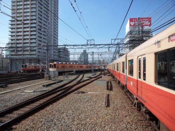P1050199-B.jpg