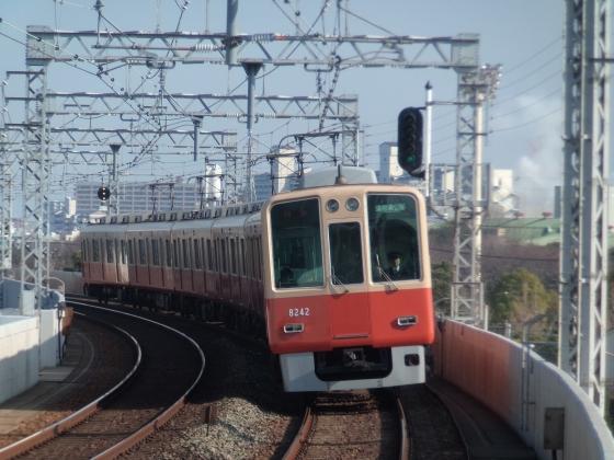 P1050211-B.jpg