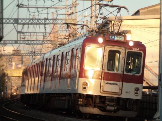 PB290011-.jpg