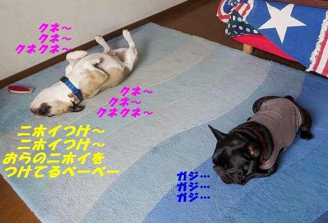 003_20150114153055ac7.jpg