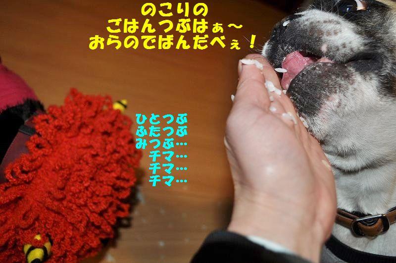 044_20150205100430673.jpg