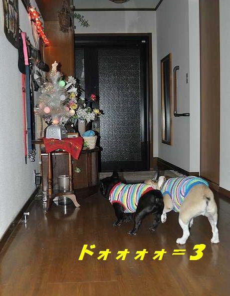 152_20141225163611c2e.jpg
