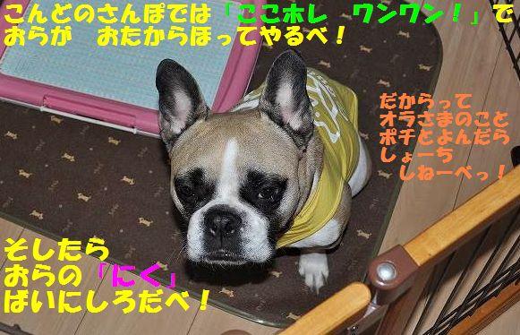 152_20150401104232bb0.jpg