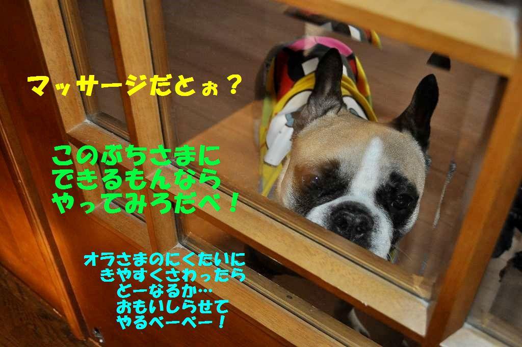162_20150318102541798.jpg