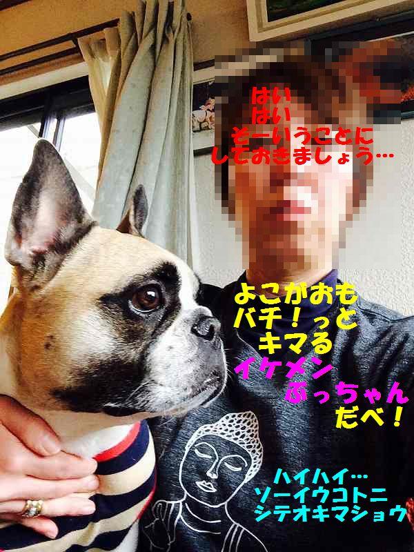 IMG_6488[1]