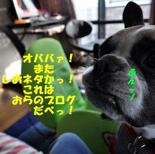 DSC_0005_20150129153456e83.jpg