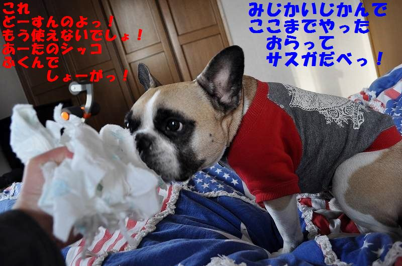 DSC_0058_20150126095329c1f.jpg