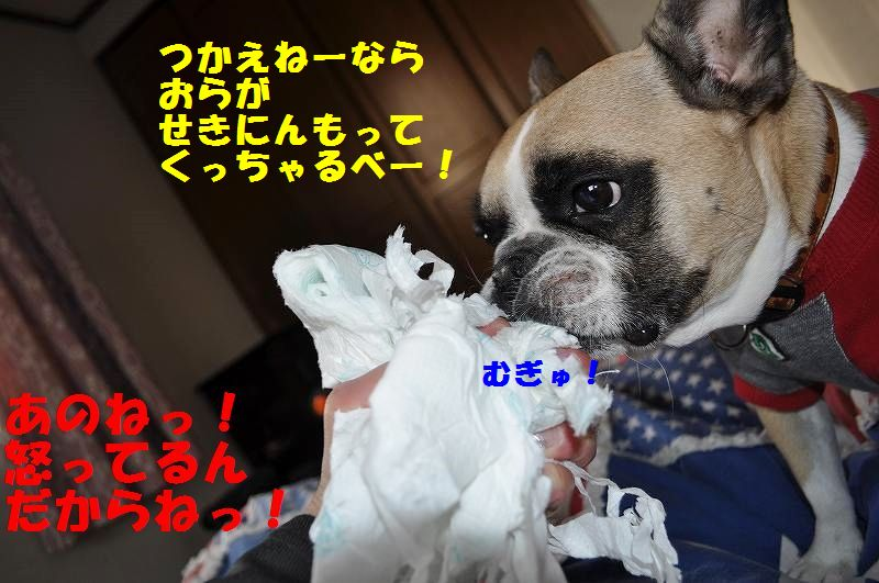 DSC_0062_20150126095331a47.jpg