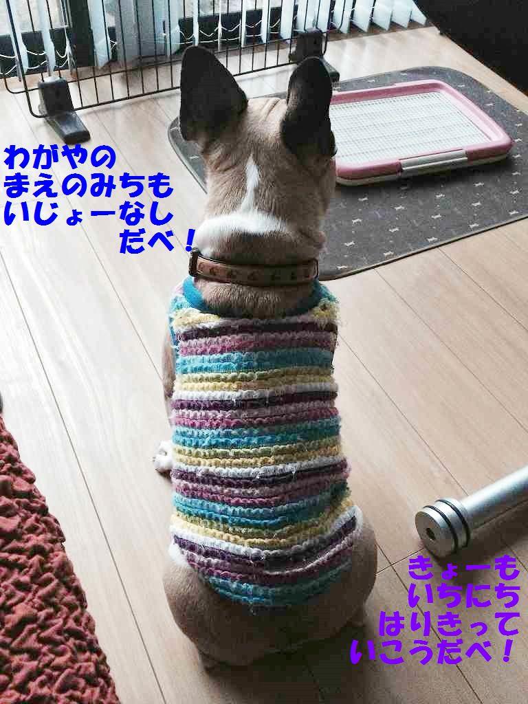 IMG_3153.jpg