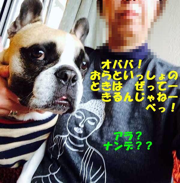 IMG_5646.jpg