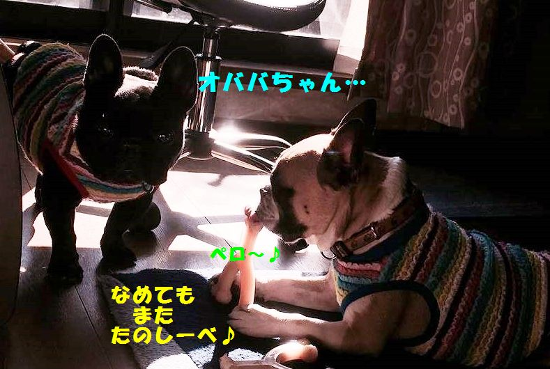 IMG_7038.jpg
