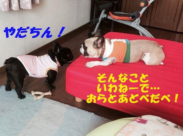 IMG_8072.jpg