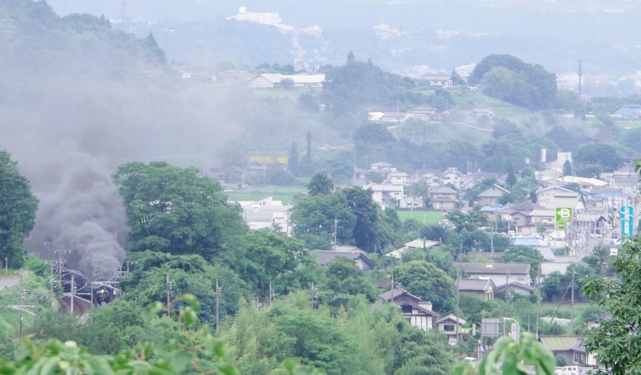 150705orihime-hikoboshi.jpg