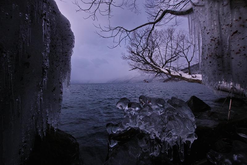 冬を見つめて