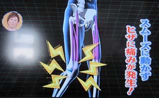 19 320 膝痛の原因太ももの前側