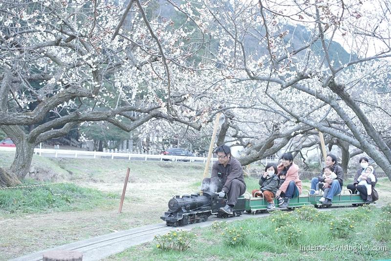 bairin_2015_01.jpg
