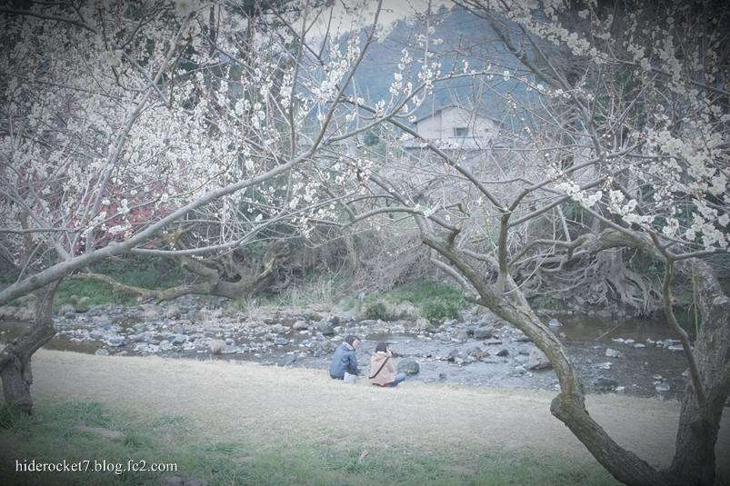 bairin_2015_04.jpg