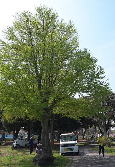 水元公園004