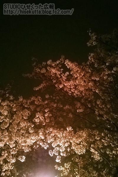 20150410.jpg