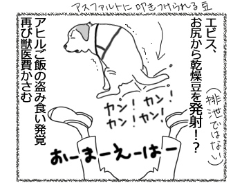 羊の国のラブラドール絵日記シニア!!「オチはやっぱり・・・?」4