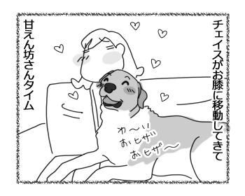 羊の国のラブラドール絵日記シニア!!「浮気現場!?」3