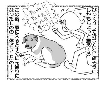 羊の国のラブラドール絵日記シニア!!「アヒルたちの呪い?」3