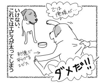羊の国のラブラドール絵日記シニア!!「チェイスの目覚め」2