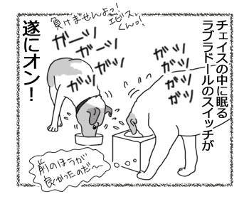 羊の国のラブラドール絵日記シニア!!「チェイスの目覚め」5